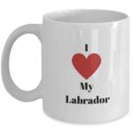 labrador, lab