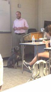 Luna dog in class